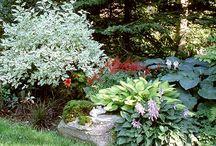 garden & co