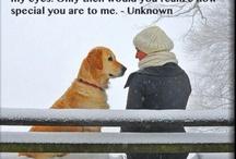 Quotes I love / by Kathleen Kondogiani
