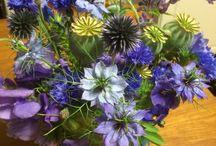 Anicas buketter / Flowers
