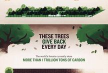 Trees & Forests