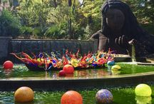 The Atlanta Botanical Garden in October 2016 - Chihuly Exhibit and more