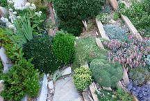 Ref jardin alpin
