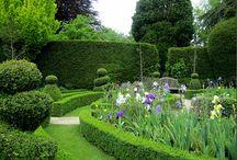 Formklip, topiary / Ideer til brug af formklippede buske og træer i haven