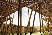 Architecture - Education