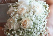 Wedding Design! / by Samantha Allan