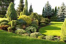 typ zahrady
