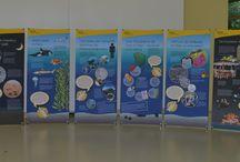 Meeresschildkröte Agathe im Einsatz / Am 30.08.2014 war die AGA am Nachmittag mit ihrer neuen Meeresschildkröten-Ausstellung im Einsatz. Agathe, das Maskottchen der Ausstellung, konnte mehr als 250 interessierte Besucher der Stuttgarter Wilhelmaschule durch die Ausstellung führen. Viele Kinder und auch Erwachsene nutzten die Gelegenheit, sich eine Stofftasche zu bemalen, um diese in Zukunft statt Plastiktüten beim Einkaufen zu nutzen. Die Ausstellung kann zusammen mit einem Aktionsleitfaden bei der AGA ausgeliehen werden.