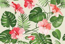 Tropical design leaf