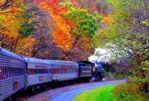 Autumn / by Donna Levi