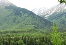 Alaska Trip / by Lauren Mize