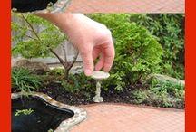 Fairy tutorial garden