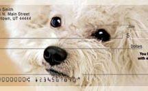 Bichon Frise / Cute pics and gift ideas for bichon frise lovers. Get Bichon Personal Checks www.doggiechecks.com