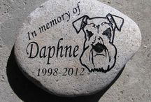 Engraved portraits / PORTRAITS IN STONE, THE ART OF ENGRAVING PHOTOS ETCHING PICTURES & CARVING IMAGES INTO STONE & ROCK. We started engraving portraits and photos into stone to satisfy requests from our customers to provide custom memorials with photos of their loved ones or pets engraved into the stone memorial. Slowly this grew and now we engrave images from photos into stone for wedding gifts, pet memorials, pet portrait memorial stone canadamemorial stones, dedication plaques and tree memorial rocks.
