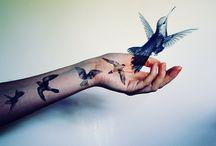 """""""birdy"""""""