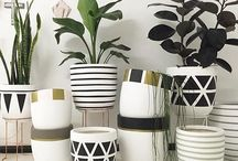 Deração- vasos