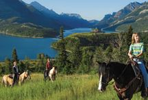 Horseback Riding  / Release your inner cowboy or cowgirl while you experience horseback riding in the Canadian Rockies.  / by Explore Rockies