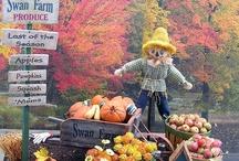 Scarecrow / Happy garden spaces.