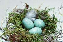 Wielkanoc/dekoracje / ozdoby, tradycje
