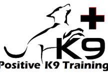 Positive K9 Training- Dog training blog