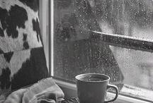 buongiorno | inLuce / Una foto al giorno, porta un buongiorno giorno!