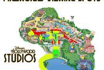 Disney & Universal ✨