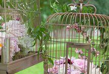 my lovely garden image <3