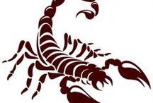 Tatoo escorpião