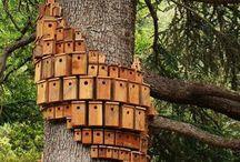 1.1.8 Birdhouse