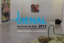 Bienal Nacional 2013