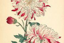 ideas floral