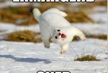 Haha! :D / :D / by Kellee Jones