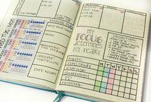 Organization (life)