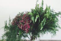 roslinki,dekoracje