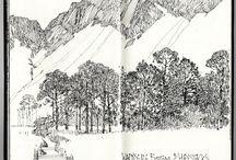 Fine line drawings