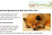 My Hometown Vet News / Articles and news from Durham and North Churton Animal Hospitals. We'll share up-to-date information with our clients and friends.
