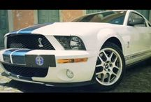 Ford Mustang / by Denny Andrews Ford Sales