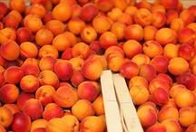 << Apricots * Peaches >> / by GR2Food Institute