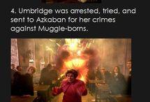 Potter-Fakten