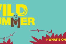 Event Management - Summer / We had wild fun with the marketing of this campaign for Guildhall Shopping Exeter - we produced all collateral and managed the events.