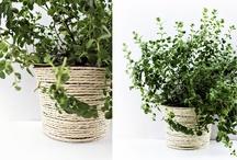 Covering plant pots