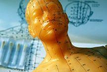 Akupunktur og immunforsvar