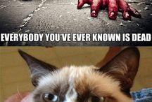 Grumpy cat. :)