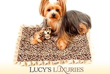 Lucy's Luxuries / Pet Carriers and Accessories