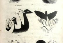 sombras Maura ♥♥
