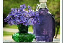 La purple Green