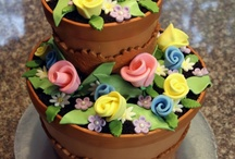 Flowerpot Cake and Cupcakes ❤