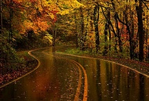 Journey..the bend in the road isn't the end of the road, unless you refuse to take the turn / by Lisa Insani