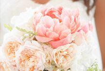 pétales de fleurs / Flowers / arrangements / by Leigh Wozniak