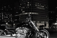 Motorcycles / by Tamar Boyrazian