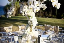Athens Weddings / The Twelve Events has hosted numerous Athens weddings with uniquely lavish and sophisticated concepts!! We are specialized in Athens wedding ceremonies and together, we will design an exclusive event for you, that will highlight the excellent beauty of the Greek culture. Our goal is to plan elegant, stylish and executive affairs, exactly as your wedding day has to be! Have a look to a selection of our Athens affairs!  http://www.the12events.com/athens-weddings/